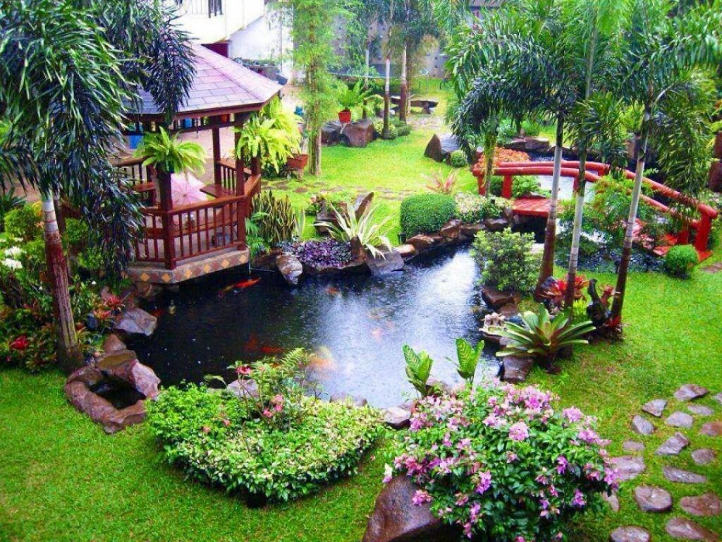 красочный пейзаж на дачном участке