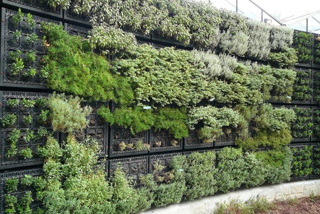 объёмный вертикальный сад из разных растений и трав