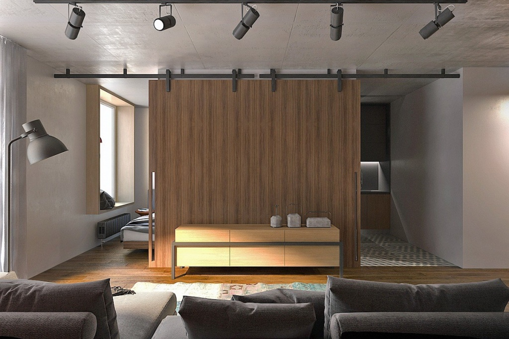 Двойная ниша для кухни и спальни с подвесными дверями в стиле лофт